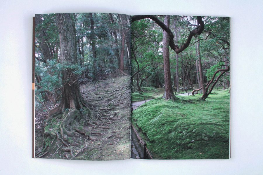 Laurent Pariente<br>Saihô-ji kyôto - IMG_0583V2-copie.jpg