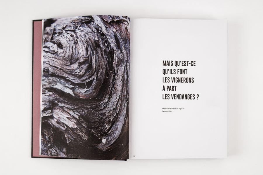 Le vin, par ceux qui le font, pour ceux qui le boivent par Sylvie Augereau - 2Z9A0117_DxO-intérieur.jpg