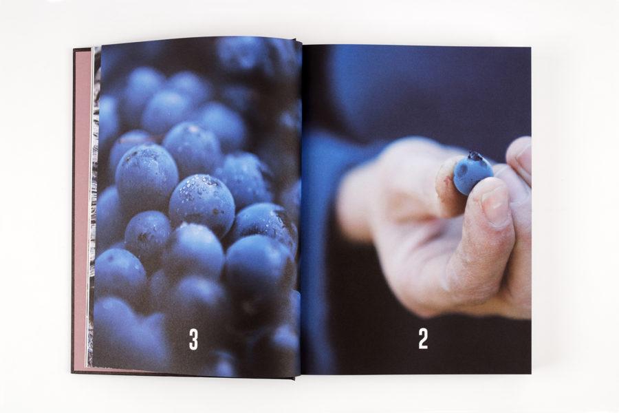 Le vin, par ceux qui le font, pour ceux qui le boivent par Sylvie Augereau - 2Z9A0118_DxO-intérieur.jpg